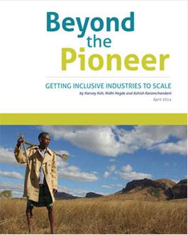 beyond the pioneer
