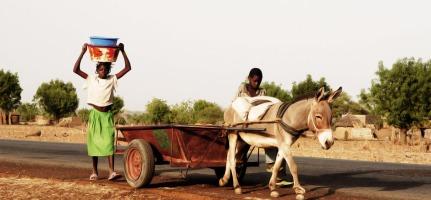 CSR-Africa